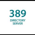 389 Directory Serverの読み方