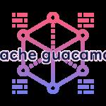 apache guacamoleの読み方